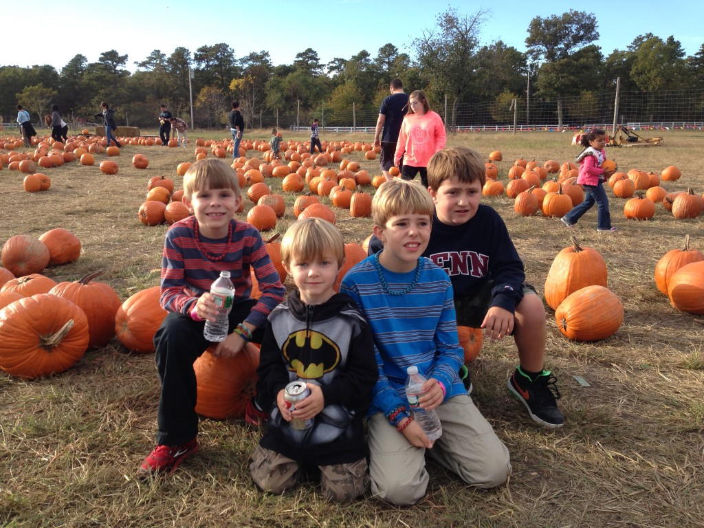 Pumpkins group