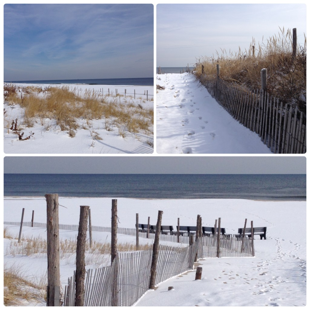 snowy beach collage