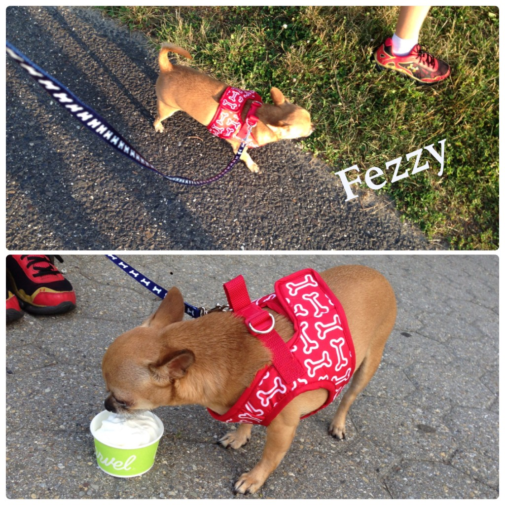 fezzy walk