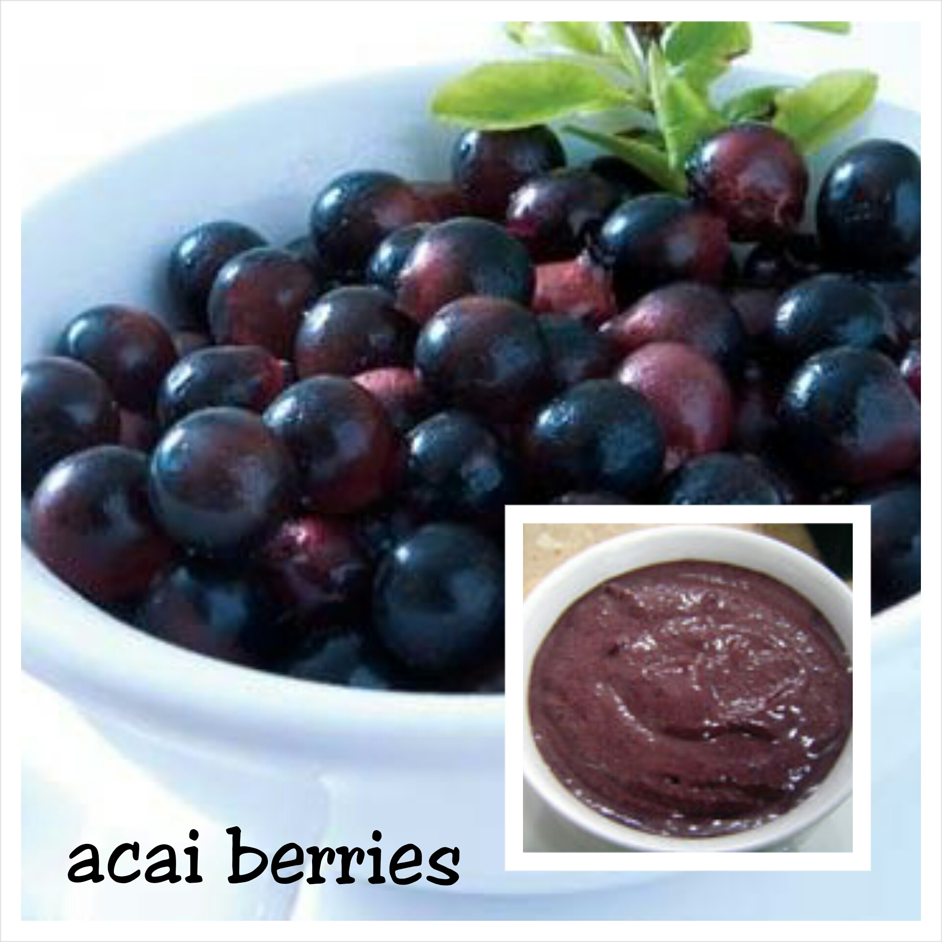 where can i get acai berries